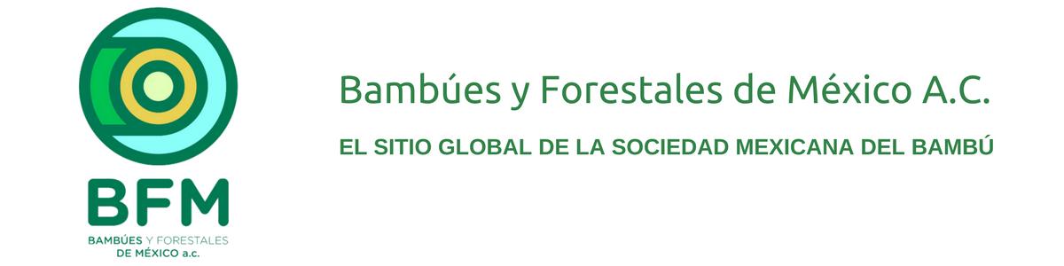Bambúes y Forestales de México